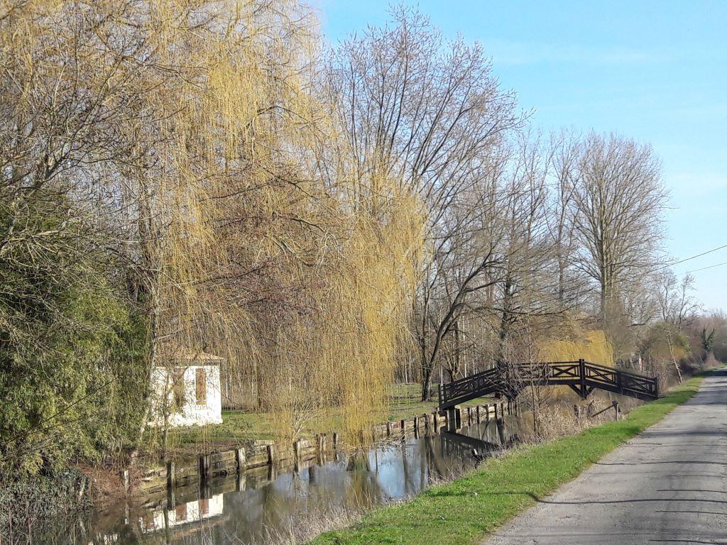Halage entre le Mazeau et Coulon